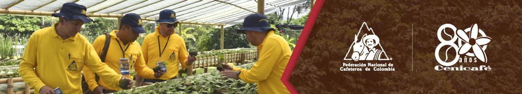 Ciencia, tecnología e innovación para la caficultura colombiana.