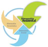 <p>Dimensión Ambiental</p>
